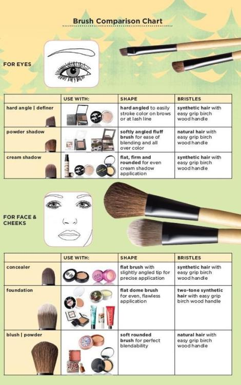 MAKEUP  BRUSH HOW - TO